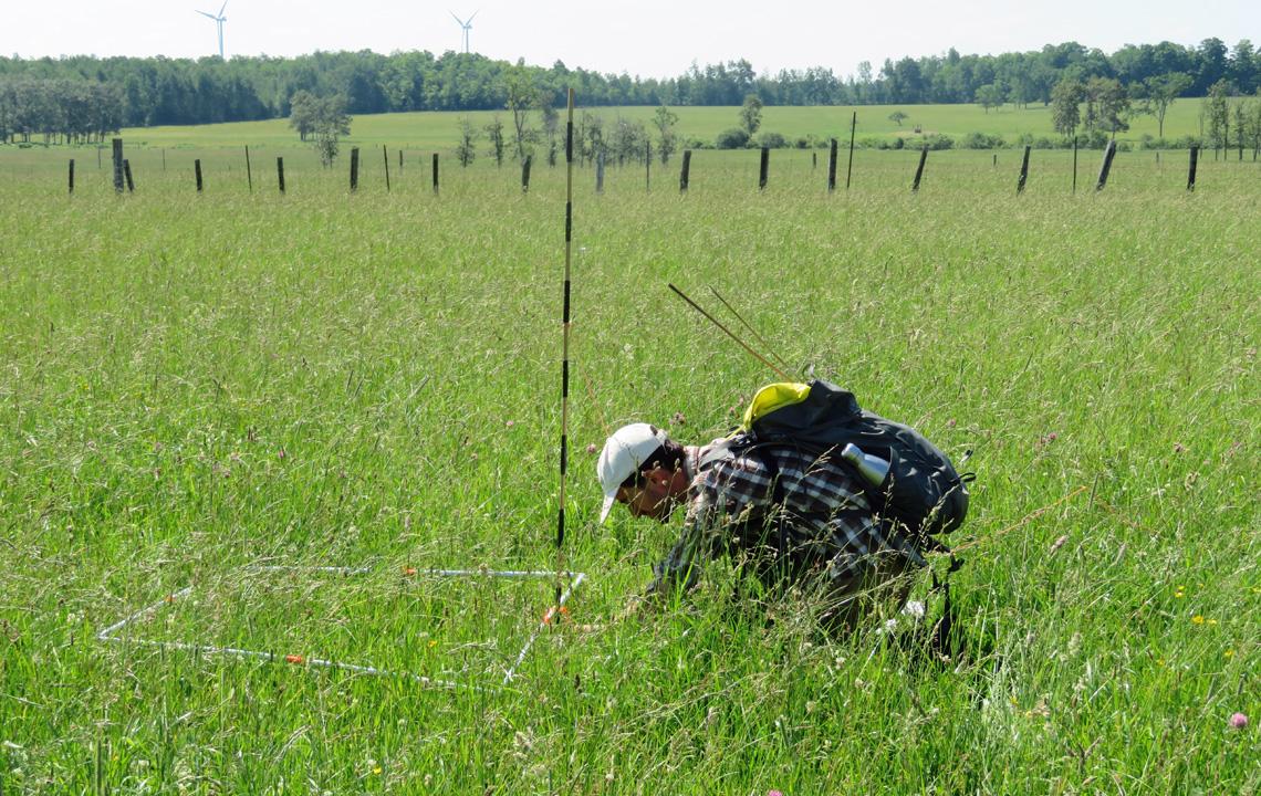 Ryan Hill collecting vegetation measurements