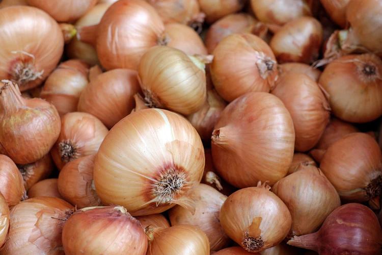 sokisahtel-onion