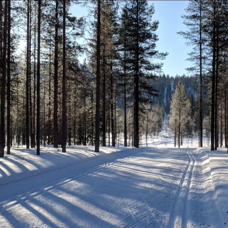 Ski track Finland