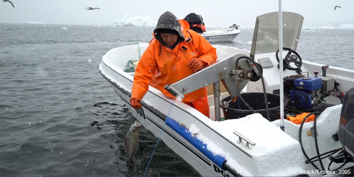Fishermen in Greenland