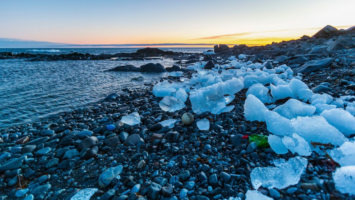 Plastic pollution on Icelandic coast