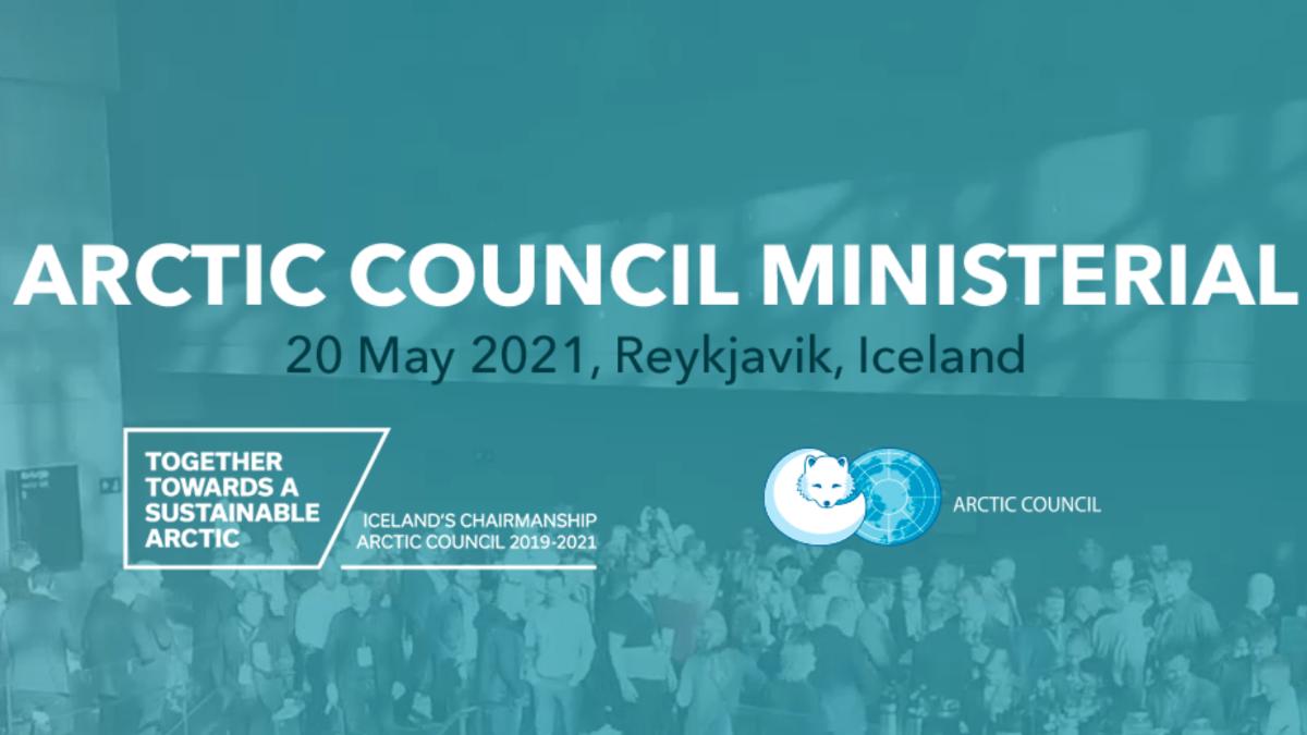 Screenshot from the online meeting platform