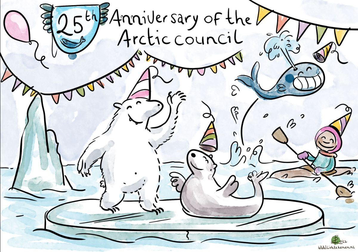 Comic of the Council's anniversary