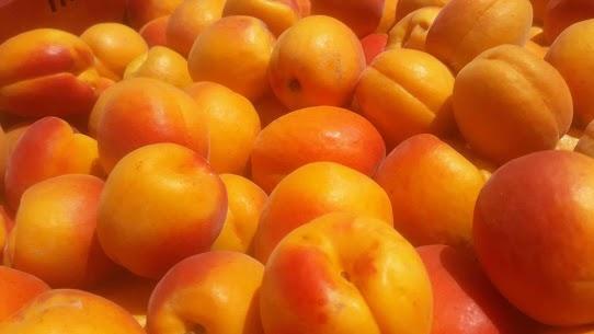 abricot romanat