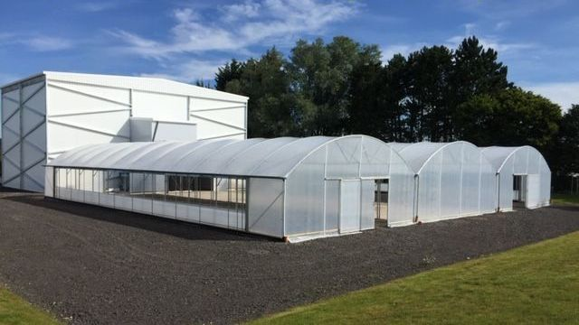 Multi Bay Keder Greenhouse 24m wide