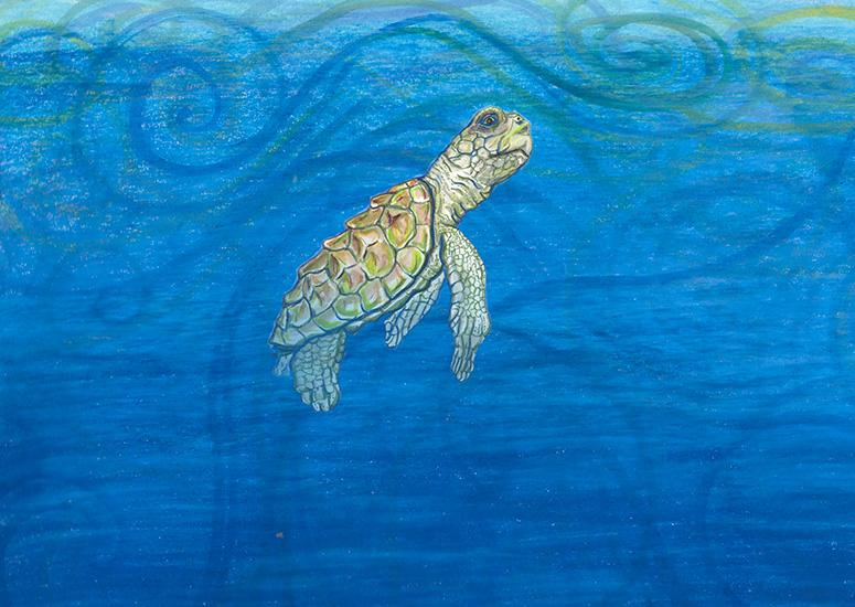 A juvenile sea turtle floating below the surface of the water in an oil painting.
