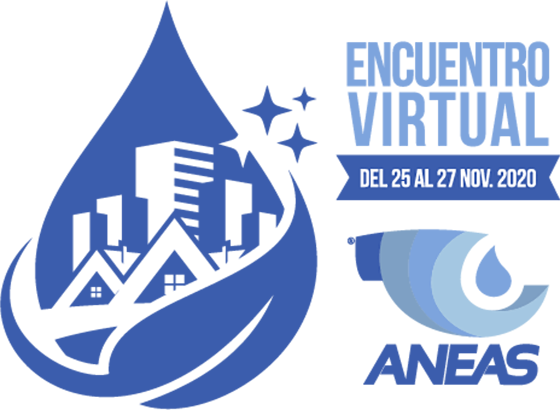 Encuentro Virtual ANEAS