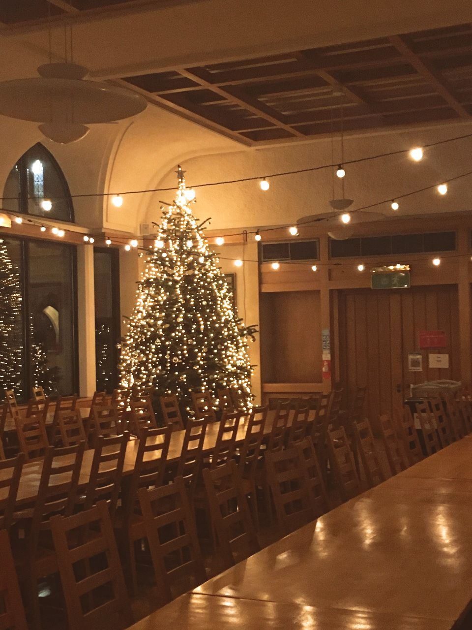 A picture of the Christmas tree in the College hall, lit up with lights and with purple and silver decorations.