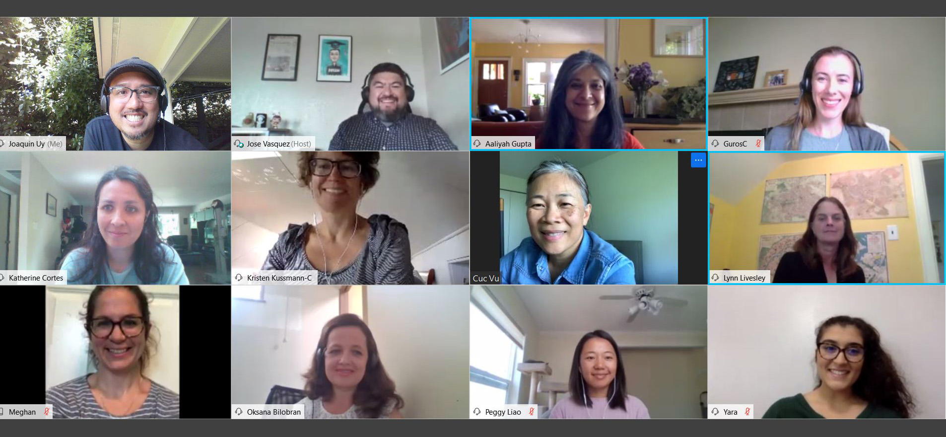 A screenshot of OIRA staff on a video conference call.