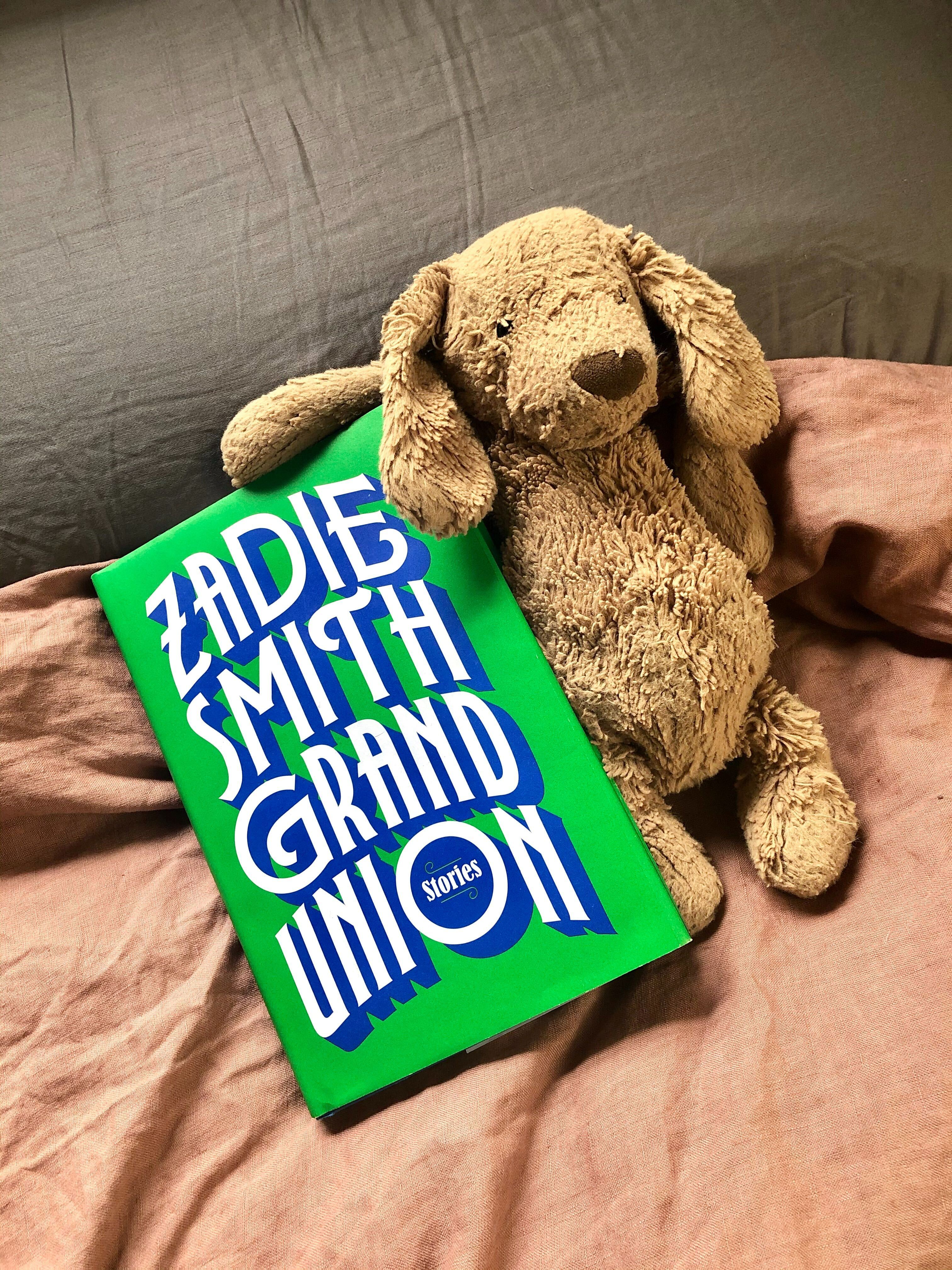 A photo of Zadie Smith's book Grand Union Stories, with a well-loved stuffed dog beside it.
