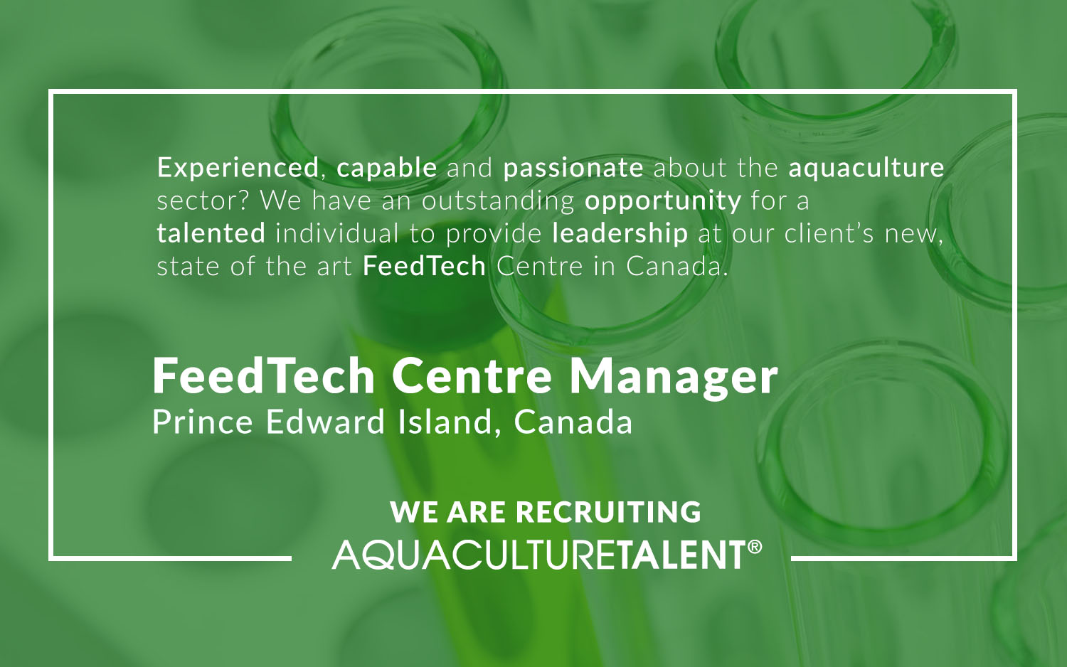 Experienced, capable and passionate about the aquaculture sector? We have an outstanding opportunity for a talented individual to provide leadership at our clients new facility in Canada.