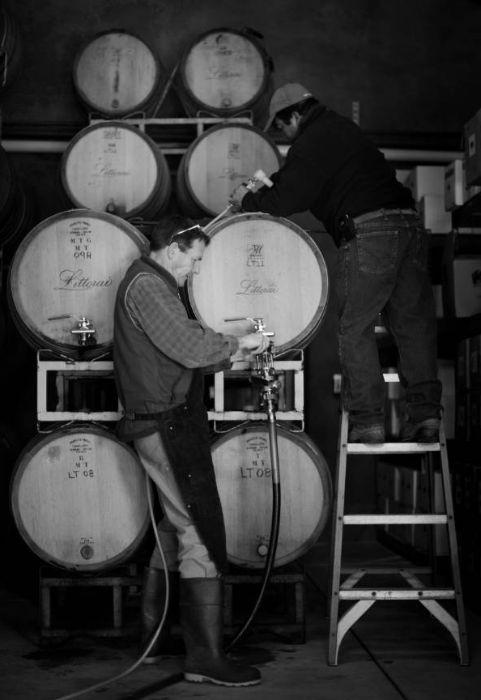 Racking Pinot Noir from barrels
