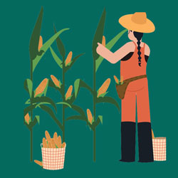 Graphic depicting farm workers