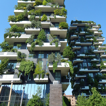 A building with plants growing on it