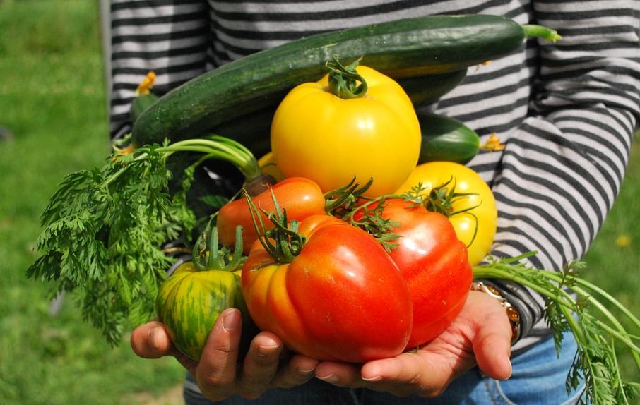 veggie bounty