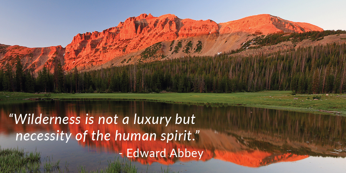Edward Abbey quote graphic