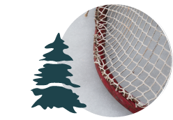 An illustration of a pine tree over an image of a hockey net.