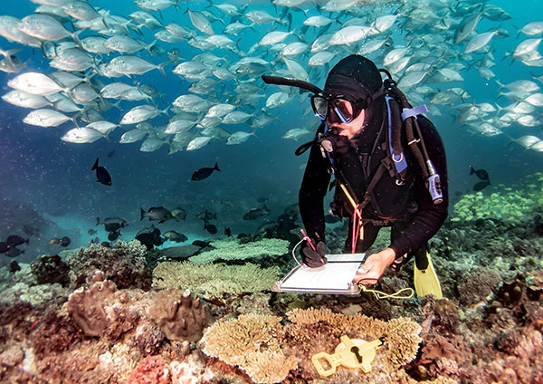 Graham Edgar takes notes in full scuba gear as he is surrounded by fish