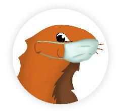marmotte masque