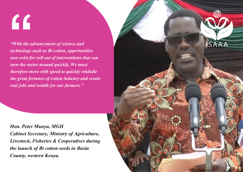 Hon. Peter Munya, MGH, Cabinet Secretary, Ministry of Agriculture, Livestock, Fisheries & Cooperatives during the launch of Bt cotton seeds in Busia County, western Kenya.