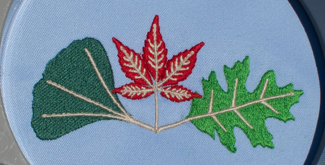 cotty thread sewout of leaves