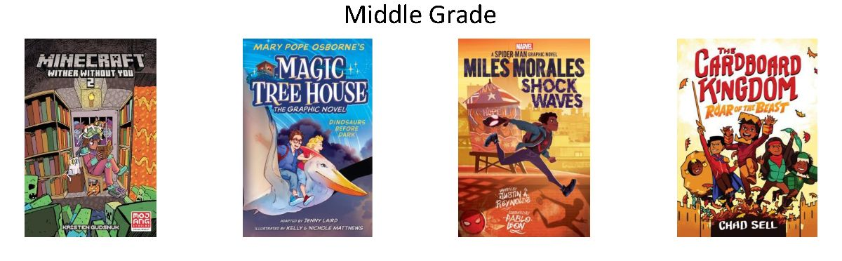 Book Covers for Middle Grade Books Ordered April 2021