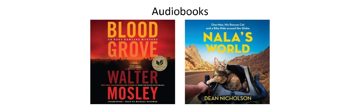 Book Covers for Audiobooks Ordered April 2021