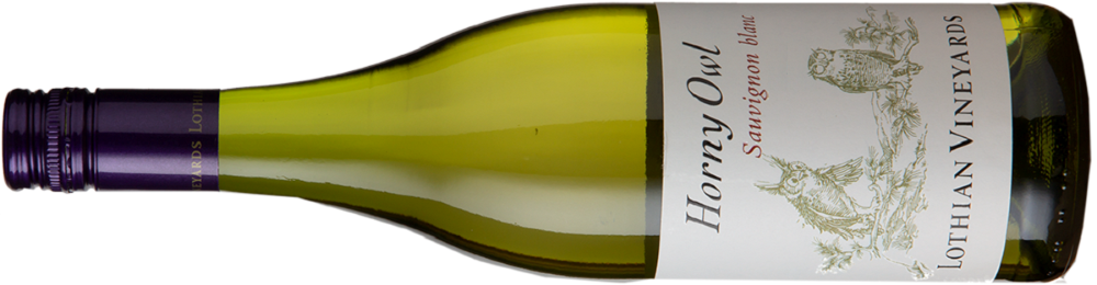 Lothian Vineyards Horny Owl Sauvignon Blanc2020  uit Elgin - Zuid-Afrika