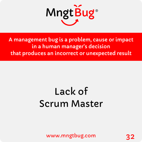 Management Bug 32 Lack of Scrum Master