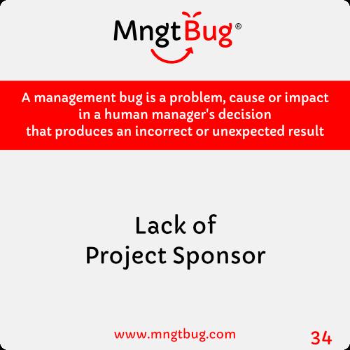 Management Bug 34 Lack of Project Sponsor