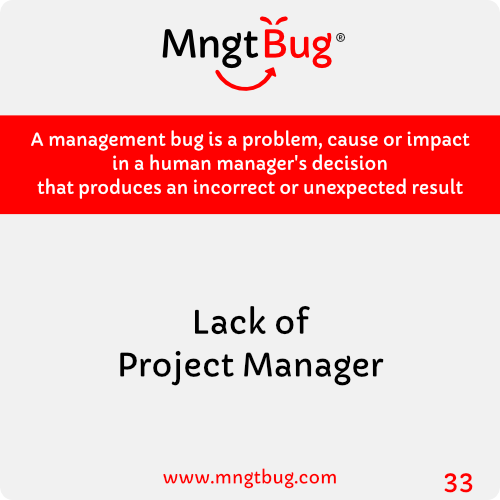 Management Bug 33 Lack of Project Manager