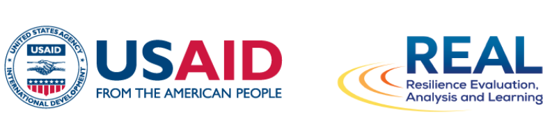 USAID and REAL logos