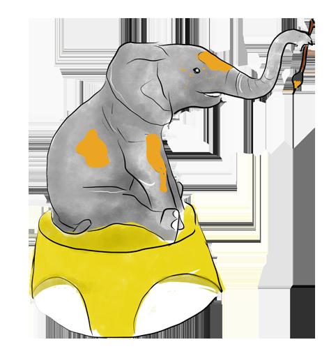 Slon - rehabilitace hrou