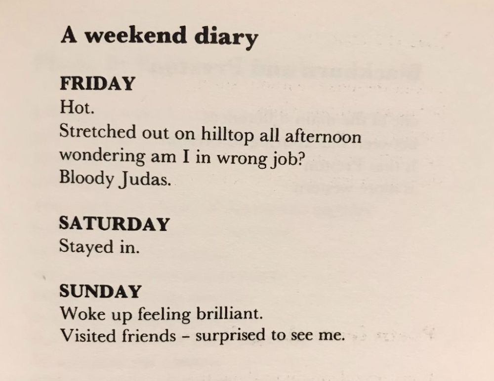 [A Weekend Diary by John Hegley]