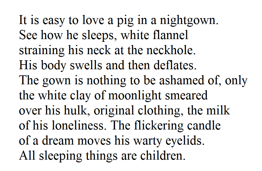 [The Sleeping Pig by Jenny George]