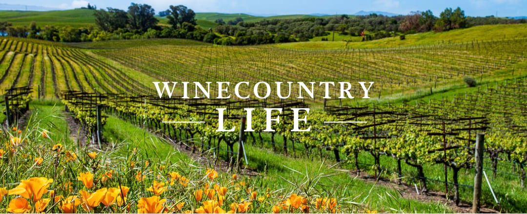 WineCountry Life
