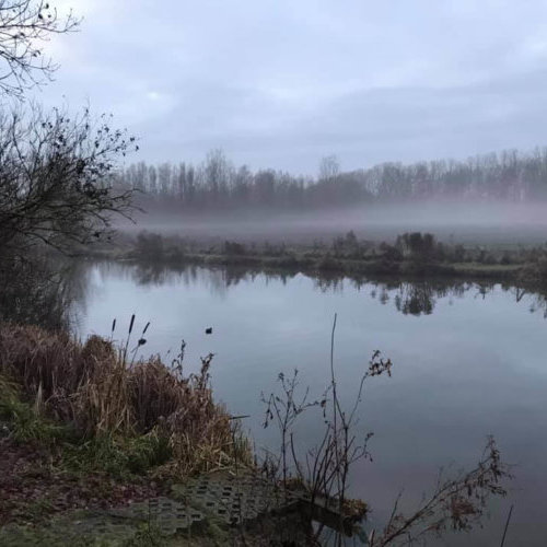 mist over de Kaaimeersen