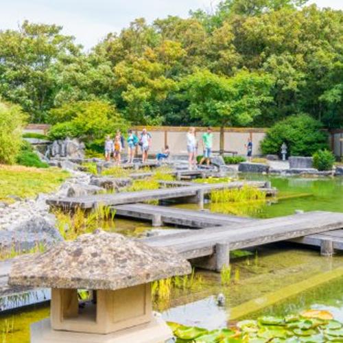 beeld uit de japanse tuin