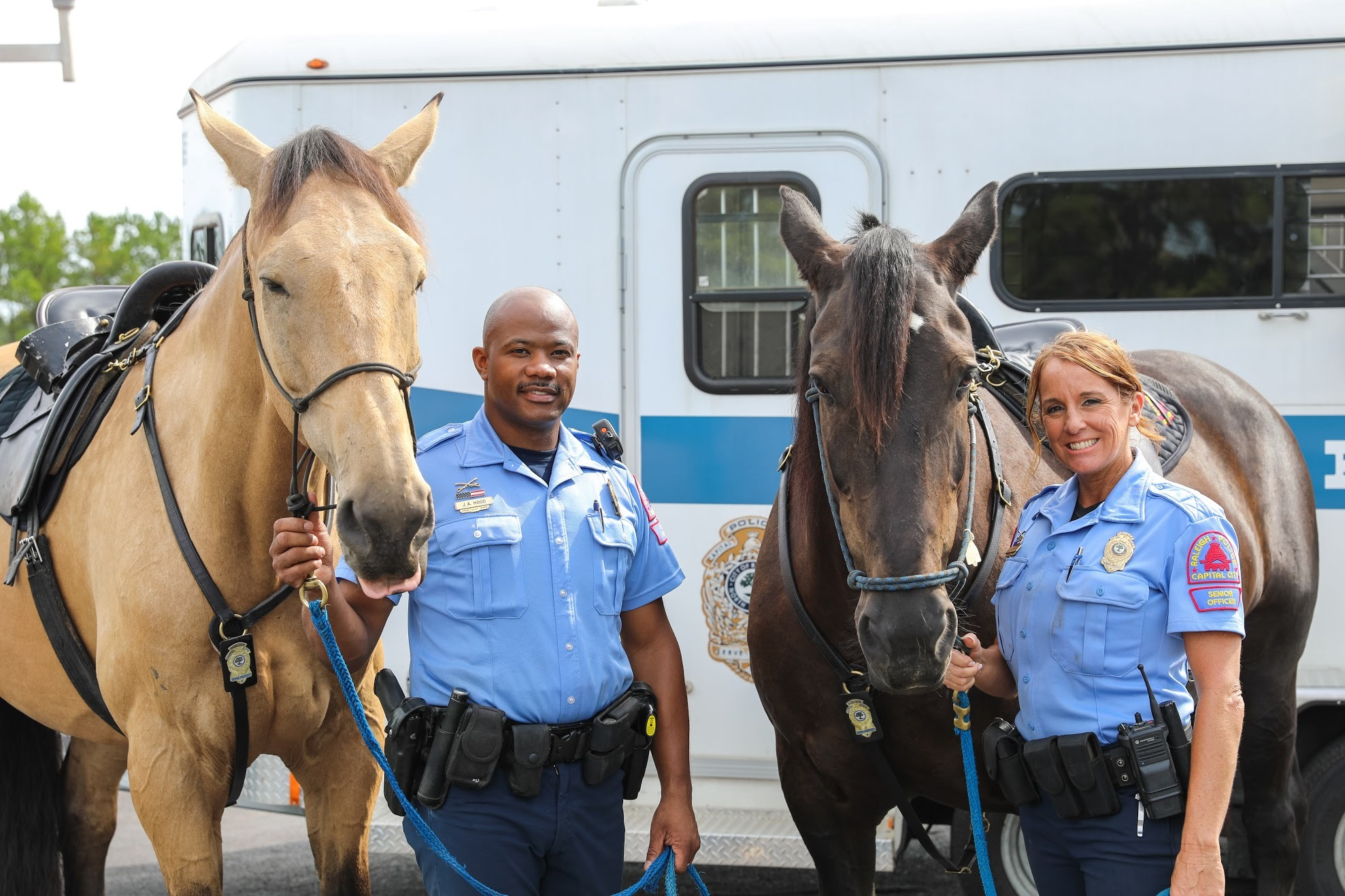 Horses and officers