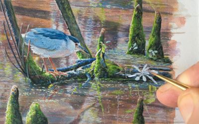 Serenity in the Swamp in progress by Wes Siegrist
