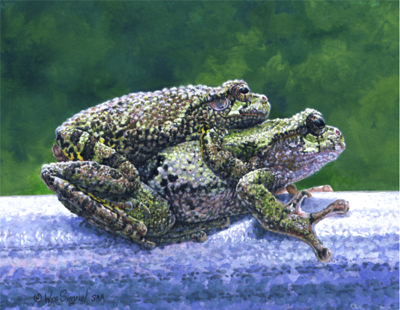 Froggie Went a Courtin' by Wes Siegrist