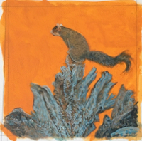 Southern Fox Squirrel painting in progress by Wes Siegrist