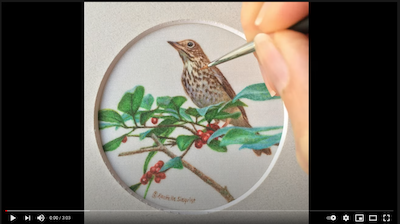 Painting a Wood Thrush with Rachelle Siegrist