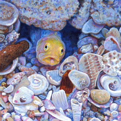 Yellow-headed Jawfish painting by Wes Siegrist