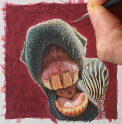 Zebra painting in progress by Rachelle Siegrist