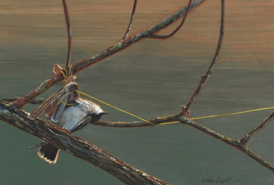 Bird painting by Wes Siegrist