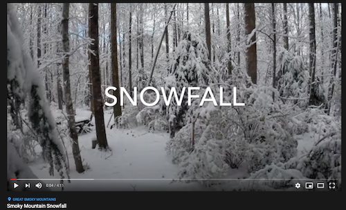 Siegrist snowfall video