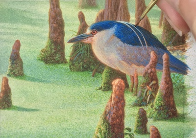 Rachelle Siegrist painting on a Black-crowned night heron