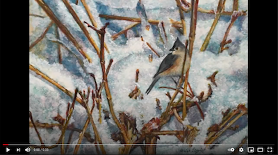 Painting a Tufted Titmouse