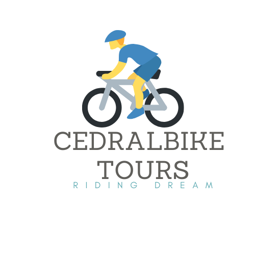 microbus bicicletas pereira